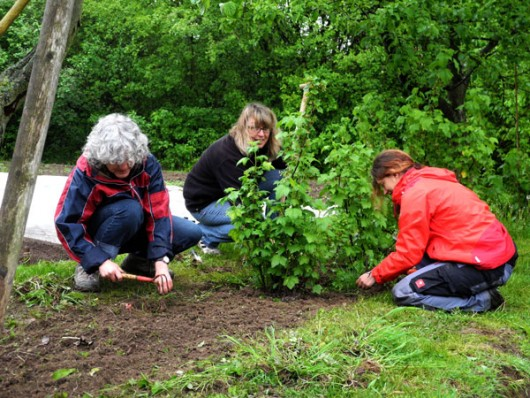 Gemeinschaftstage Schulgarten02
